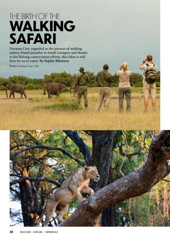 Page 40 of THE BIRTH OF THE WALKING SAFARI