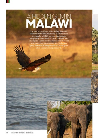 Page 44 of DISPATCH: A HIDDEN GEM IN MALAWI