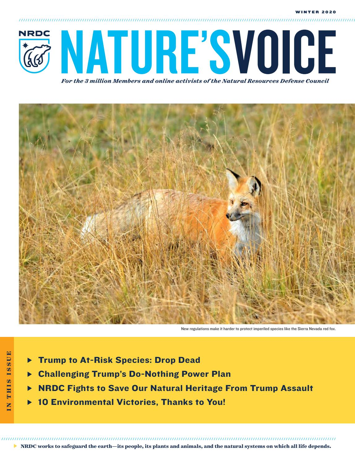 New Species 2020.Nature S Voice Winter 2020 By Nrdc Issuu
