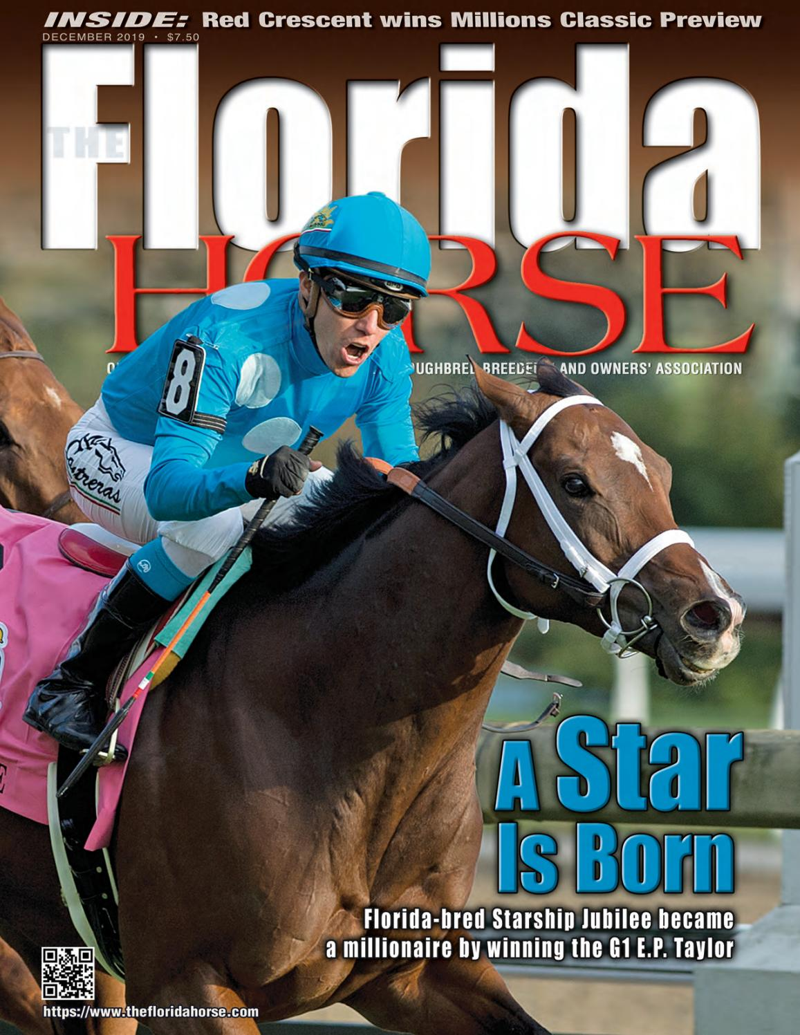 Florida Horse December 25 issue by Florida Equine Publications ...