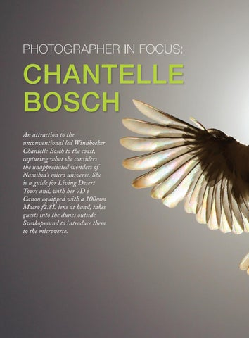 Page 42 of PHOTOGRAPHER IN FOCUS: CHANTELLE BOSCH