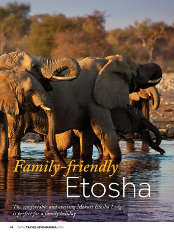 Page 48 of Family-friendly Etosha
