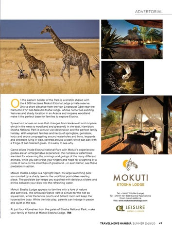 Page 49 of Family-friendly Etosha