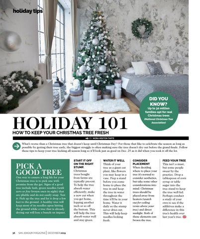 Page 36 of HOLIDAY 101: HOW TO KEEP YOUR CHRISTMAS TREE FRESH