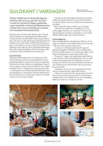 Page 17 of Boden BIld nr.2 2019
