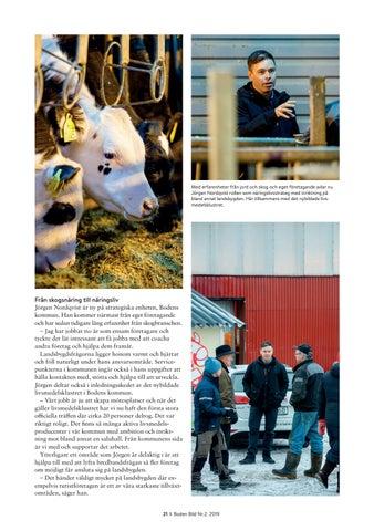 Page 21 of Strateger med näringslivet i fokus