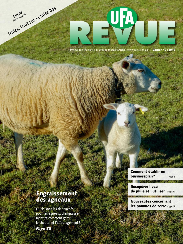 Dürr Graines-Production d/'engrais vert Coloré Mélange 250 g pour 50 m2
