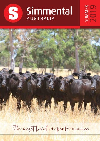 Simmental Australia Summer 2019 Annual Magazine by Simmental