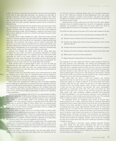 Page 45 of Concerning Cannabis
