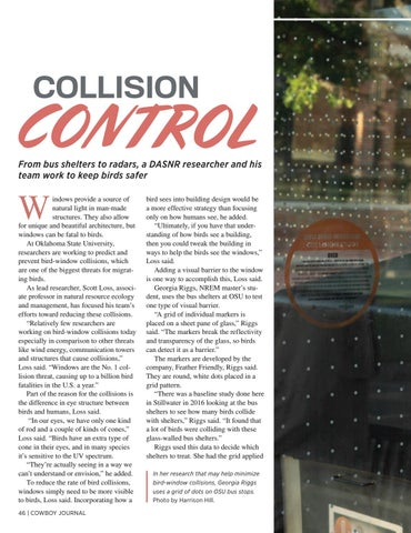 Page 46 of Collision Control