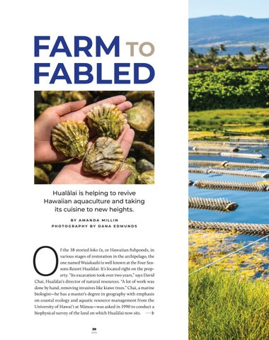 Page 32 of Farm to Fabled