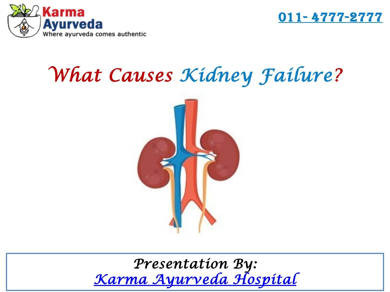 What Causes Kidney Failure By Karma Ayurveda Hospital Issuu