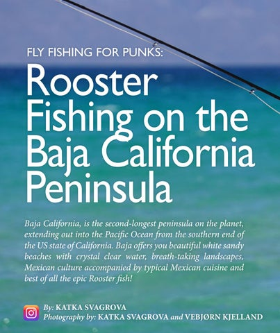 Page 112 of Rooster Fishing on the Baja California Peninsula