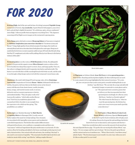 Page 33 of What's New on the Plate for 2020