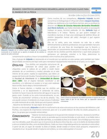Page 21 of PESCANDO LA NOTICIA - SECTOR PESQUERO INTERNACIONAL