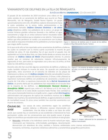 Page 6 of VARAMIENTO DE DELFINES EN LA ISLA DE MARGARITA