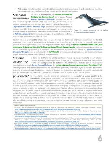 Page 7 of VARAMIENTO DE DELFINES EN LA ISLA DE MARGARITA