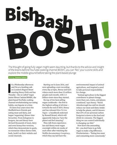 Page 68 of Bish Bash BOSH !