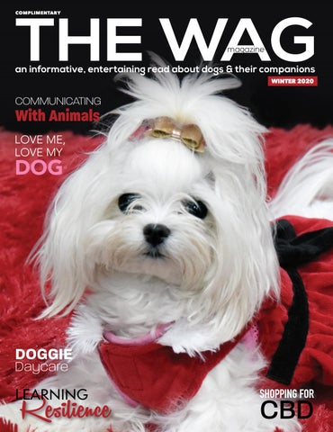 The WAG magazine Winter 2020 isssue