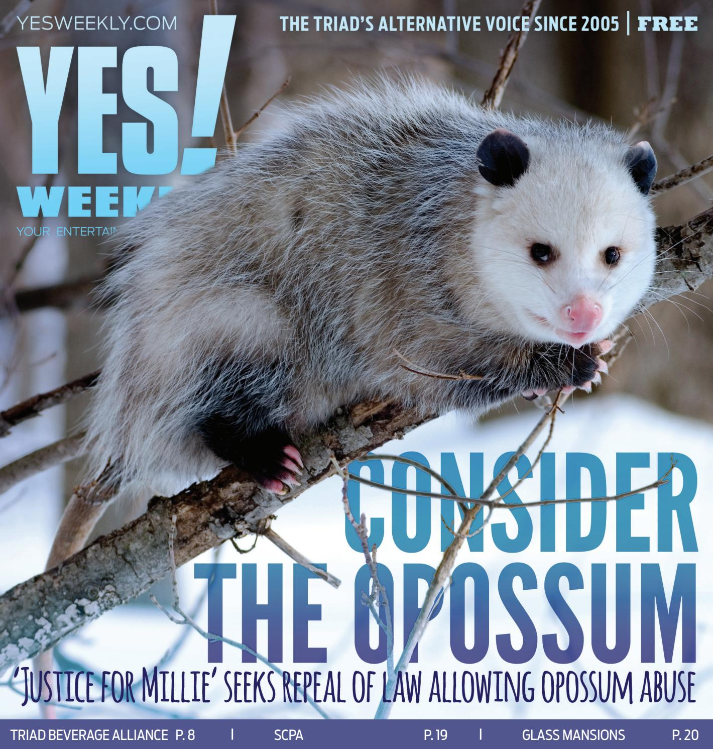 How To Get Rid Of A Possum In Your Garage yes! weekly - january 8, 2020 by yes! weekly - issuu