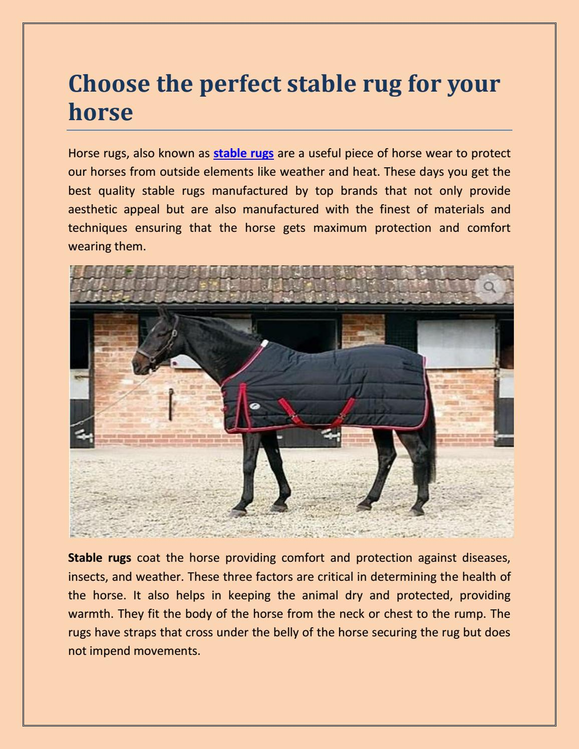 Rug For Your Horse By Jessicabeak