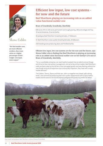 Page 16 of Shona Calder