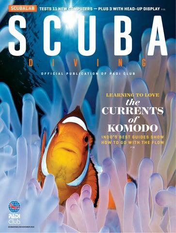 Explore CARIBBEAN Coral Sea Belize Caymans Vintage Poster Reproduction FREE S//H