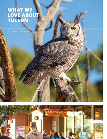 Page 14 of WHAT WE LOVE ABOUT TUCSON