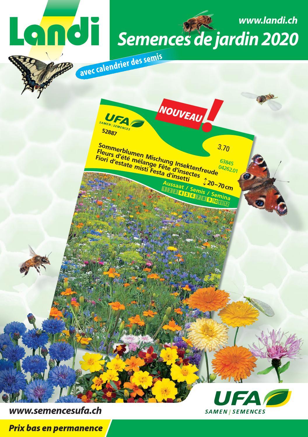 vivace jardin 100 Graines Tagetes-Calendula officinalis précieux