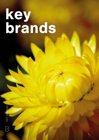 Page 10 of Our key brands