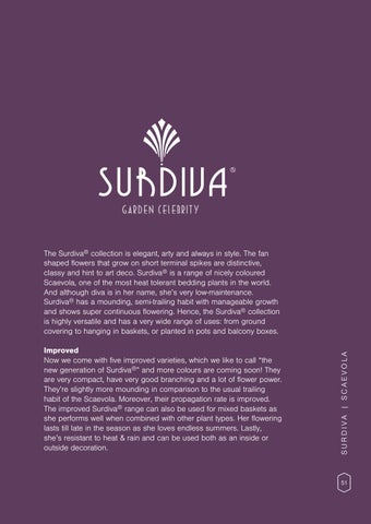 Page 53 of Surdiva®, Scaevola 2.0