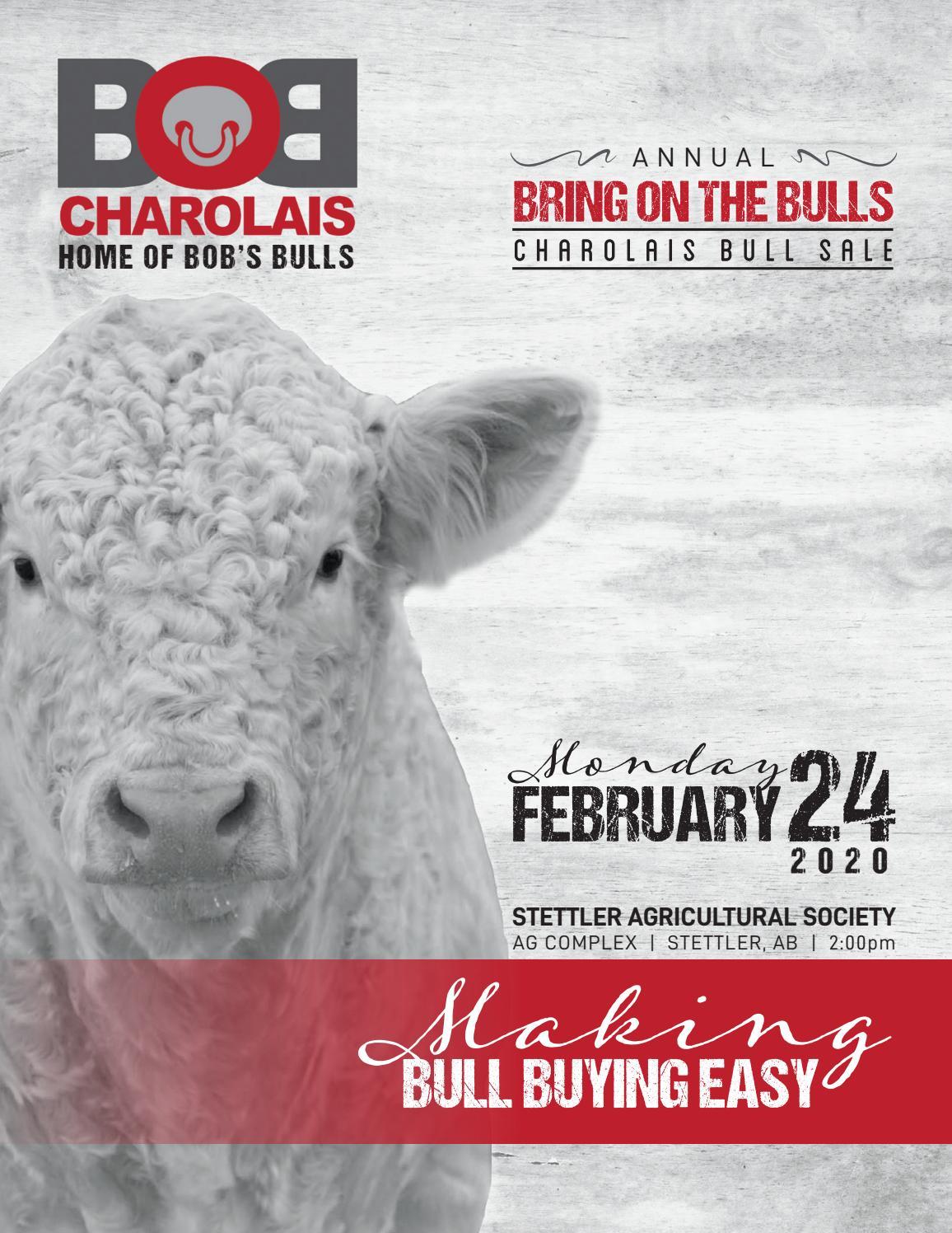 foto de BOB Charolais 2020 'Bring On The Bulls' Bull & Female Sale by ...