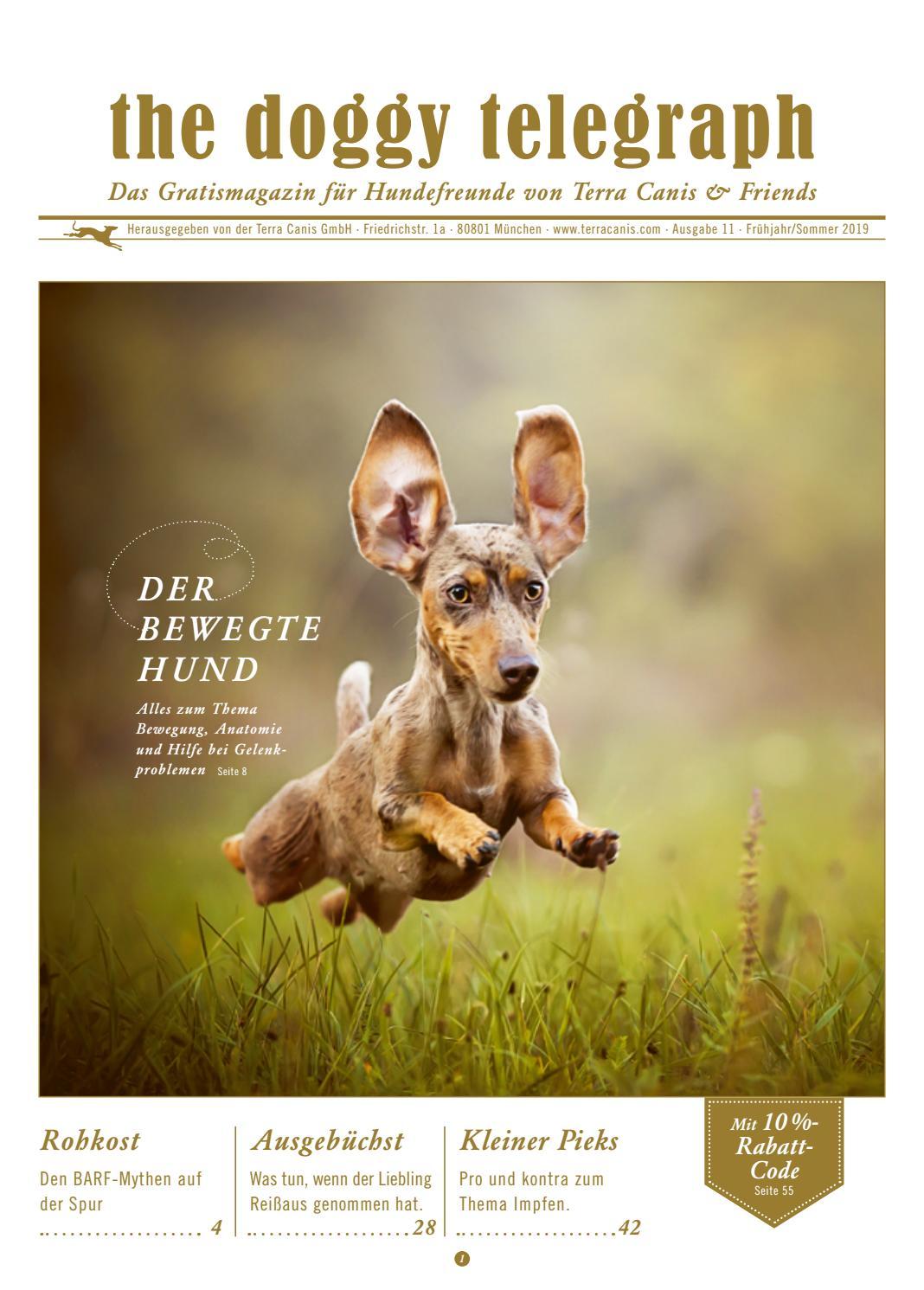 METALLSCHILD Türschild HUNDE LIEGEN NICHT EINFACH NUR RUM Tierisch Haustier