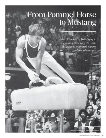 Page 19 of From Pommel Horse to Mustang