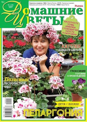 Домашние цветы №1, январь 2020 - Пелагония