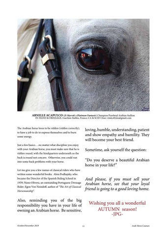 Page 11 of Arab Horse Couture - Oct/Nov 2019