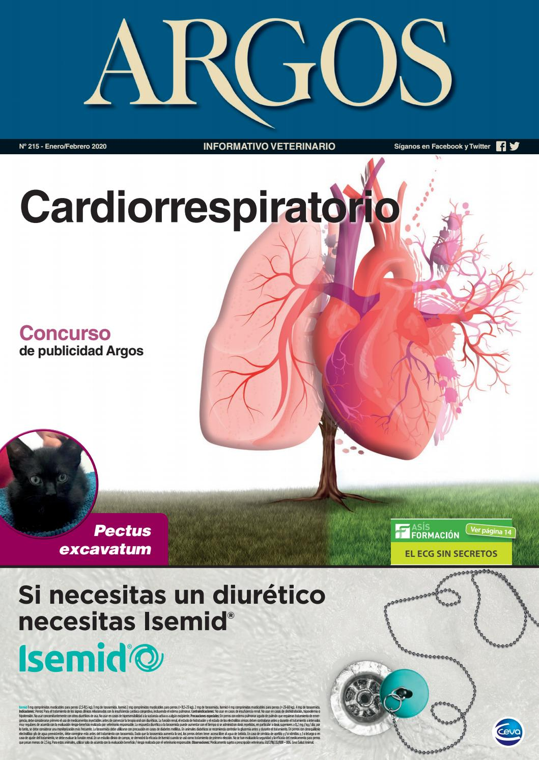 aafp folleto para pacientes con diabetes previa