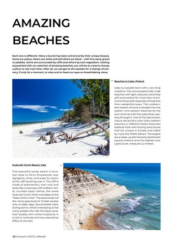 Page 18 of Amazing beaches