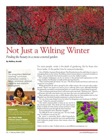 Page 32 of Not Just a Wilting Winter