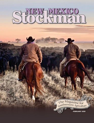 Nms February 2020 By Livestock Publishers Issuu