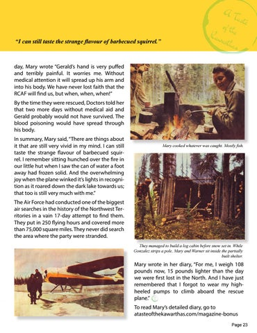 Page 23 of STRANDED IN THE ARCTIC - 19 Days lost to the world