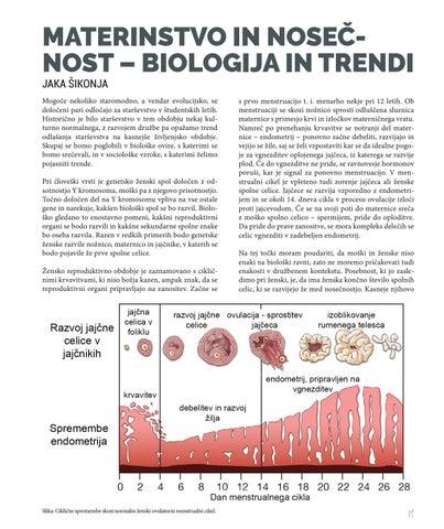 Page 13 of Materinstvo in nosečnost – biologija in trend