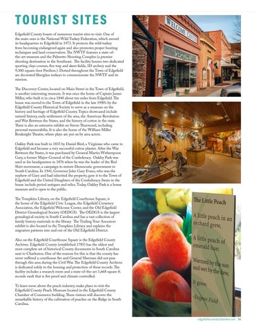 Page 17 of TOURISM & SHOPPING