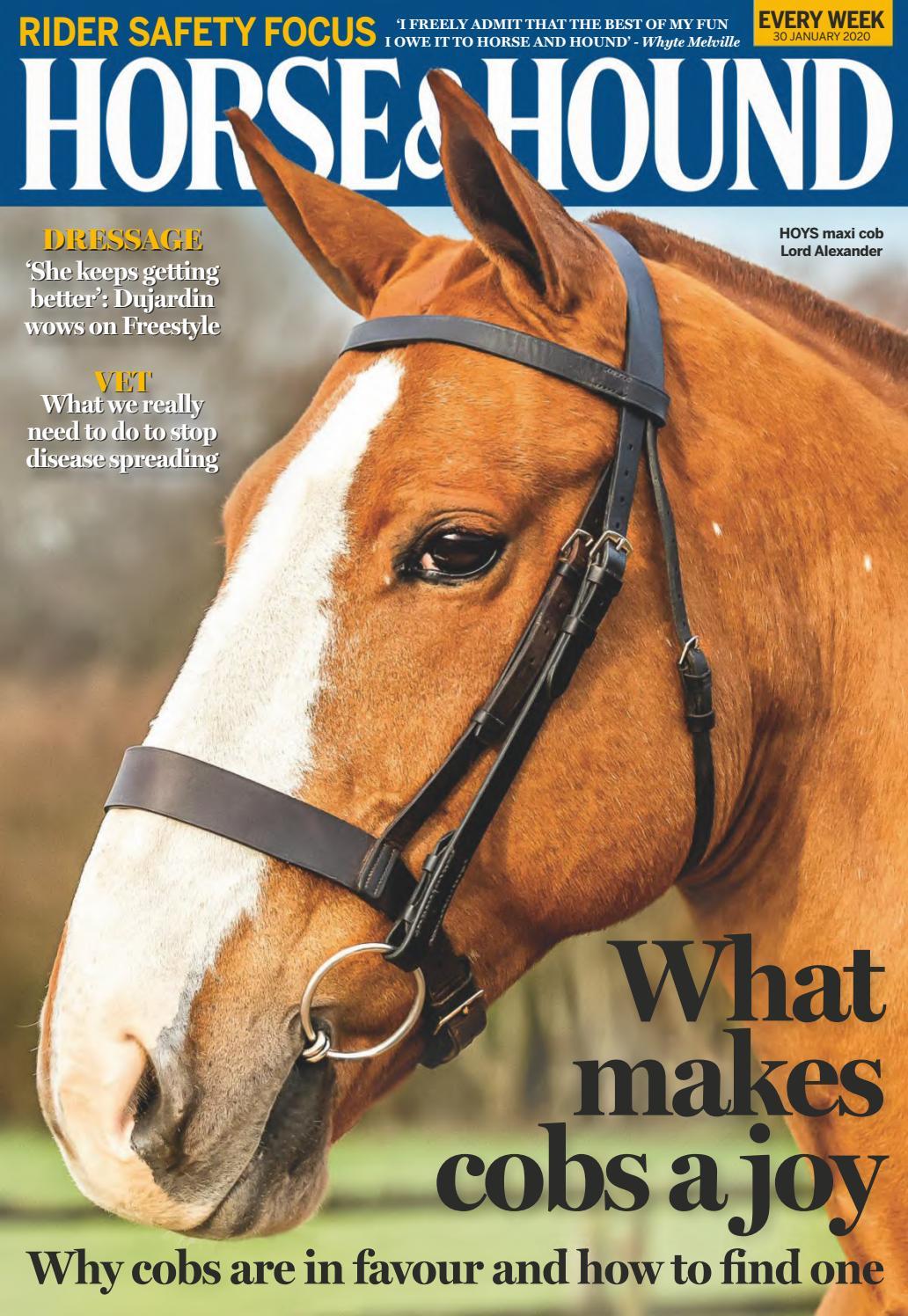 Small Pony, Red IV Horse Premium Soft Web Headcollar