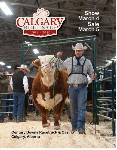 foto de Calgary Bull Sale & Ranch Horse Sale 2020 by DLMS-Cattlevids.ca ...