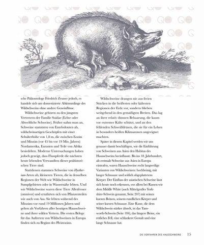Page 17 of Die Vorfahren des Hausschweins