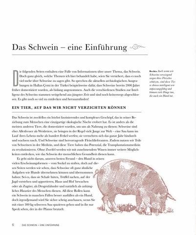 Page 8 of Das Schwein – eine Einführung