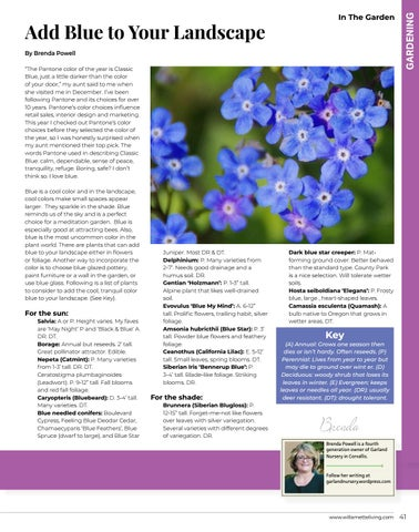 Page 41 of Gardening With Brenda