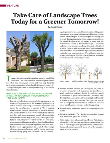 Page 14 of Take Care of Landscape Trees Today for a Greener Tomorrow!