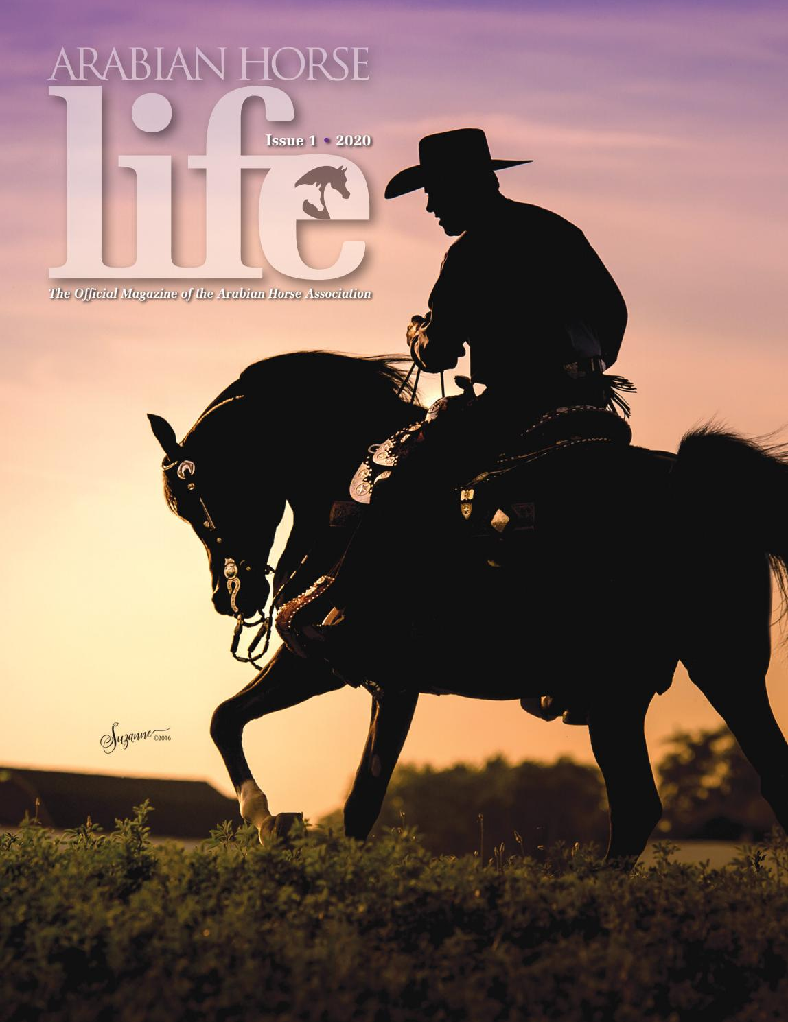 Arabian Horse Life Magazine Issue 1 2020 By Arabian Horse Association Issuu